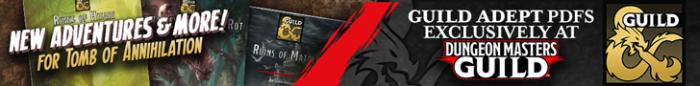 DMsGuild-GuildAdept-Banner-sm